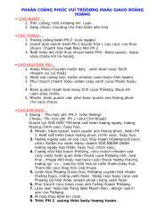 PHAN CONG MAI KHOI 09.doc