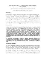 reptiliaI.pdf
